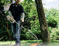 Stihl Electric GrassTrimmers